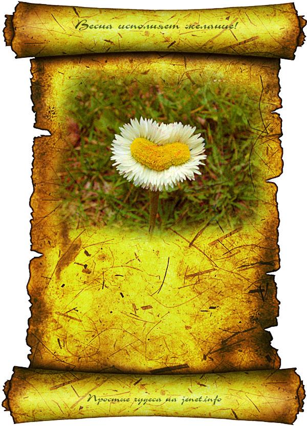 Весна исполняет желание картинка