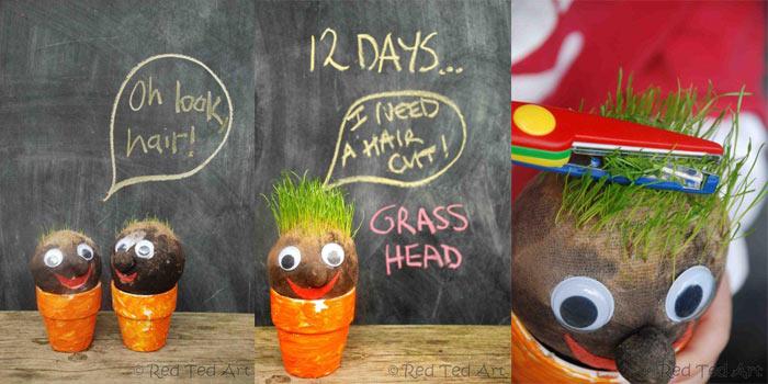 Трава-голова вместо волос